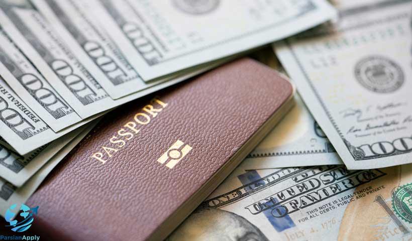 مهاجرت سرمایه گذاری چیست