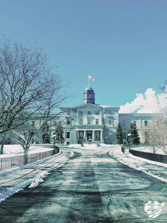 معرفی دانشگاههای کانادا | آشنایی با هزینه ها و شرایط پذیرش