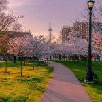 بررسی نکات کلیدی در تحصیل با مدرک دیپلم در کانادا